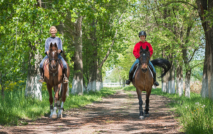 Horse back riding, active lifestyle
